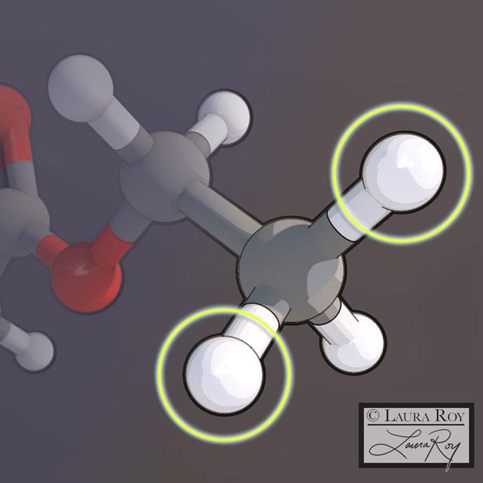 Molecular & Cellular