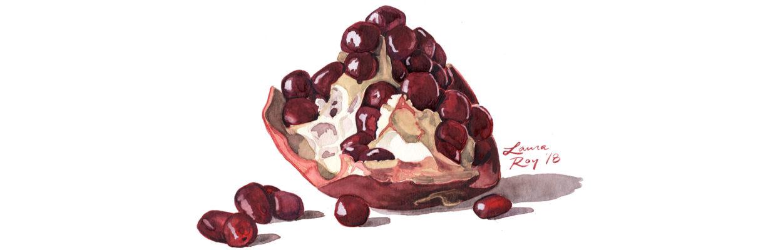 Roy Medical Illustration Pomegranate
