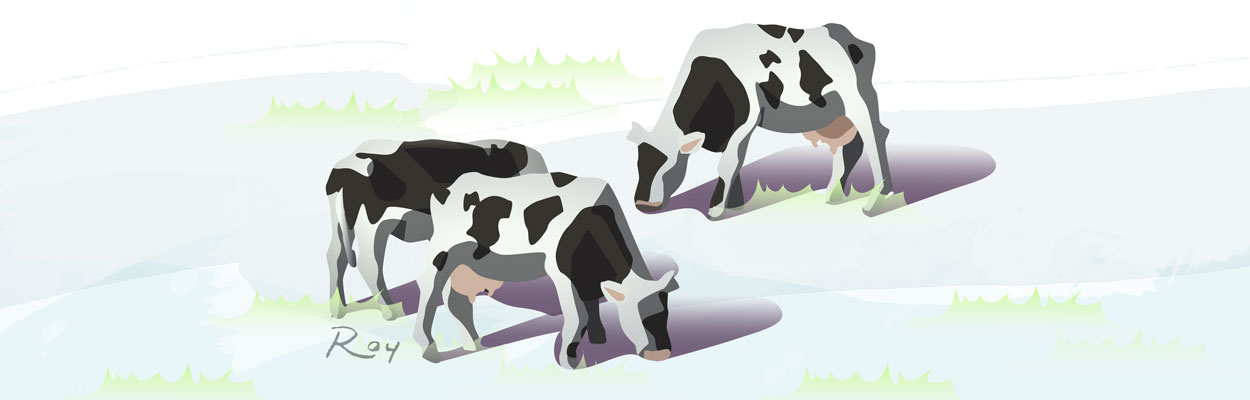 Roy Illustration Grazing Cattle Vector